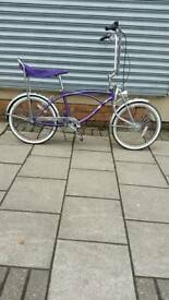 "Purple Shooting Star Cruiser Bike, 20"" Wheels, 1 Speed, 15"" Frame"