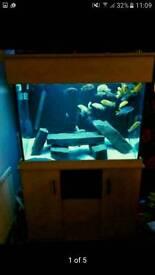 300ltr fish tank