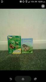 insect lore life cycle stages brand new in box and butterfly and caterpillar