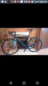 Raleigh carbon c5 rival 22 group set