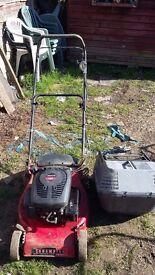 Petrol lawn mower champion
