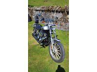 Harley Davidson 1450 Low Rider