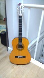 Accoustic Guitar - Palma PL44