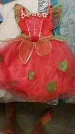 Fairy princess dress up age 5-6