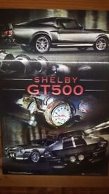 Shelby GT500 Picture