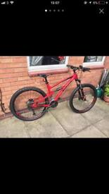 Polygon siskiu Down hill bike