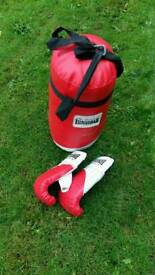 Boxing Punch bag and gloves.