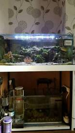 Marine fish tank with stand and sump