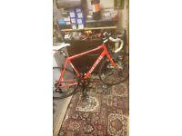 Mens carlos zellos road bike