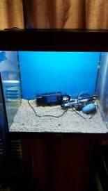 juwel lido120 complete aquarium bargain