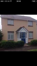 3 bedroom house wanted in Plymouth