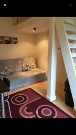 Studio Flat / Mezzanine ideal for a couple or two friends to share.