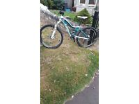 Trek Lush Full Suspension Mountain Bike - As New