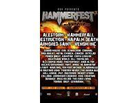 6 hammerfest festival passes