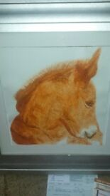 photocopy of a painting of a pony by myself