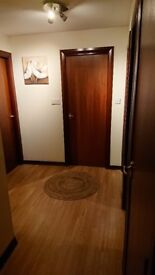 5 x Hardwood Internal Doors