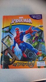 Spiderman book and make a turtle set. MAKE AN OFFER