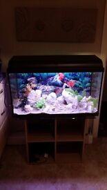 120L Fish tank/Aquarium full set up