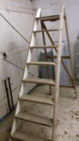 Step ladders 1.57m high