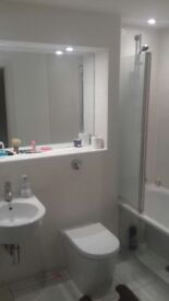 En-suite double bedroom with Living Room near Ilford station