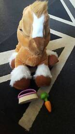 Toffee the pony with carrot and comb
