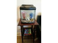 Glass fish tank medium size