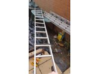 3 tier extention ladder as new used once.. and a 3 metre cat ladder