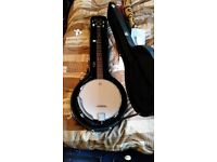Rally 5 string banjo with hardcase