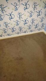 Carpet excellent condition