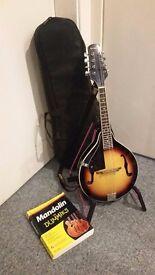 Rocketmusic Mandolin & Case - Collection Only.