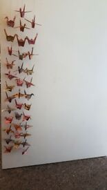 Beautiful origami japanese crane garlands