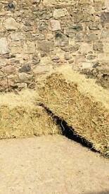 Small square hay and straw bales