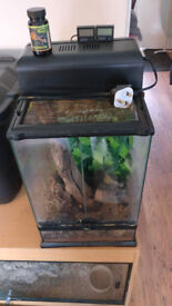 30x30x45cm Exoterra glass viv with accessories suit single Crested Gecko or similiar