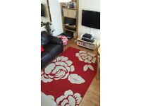 HOMESWAP 2 bed flat for 1 or 2 bed GARDEN flat any area