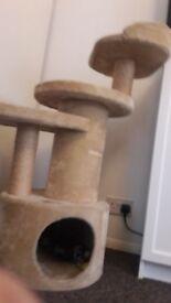 Kitten / Cat tree