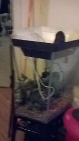 fish tank with stand 50p shape