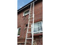 Abru 2 piece ladder