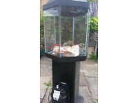 60litre hexagon fish tank