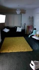 Xl mustard rug