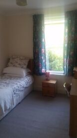 Single Room in female house share