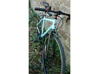 Castom Built Single Speed Fixie Revolution Bike