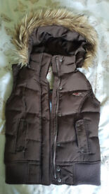 Hollister hooded gillet. Size XS