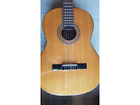 ACOUSTIC GUITAR + PADDED CASE AND STAND