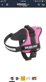 Julius K9 harness