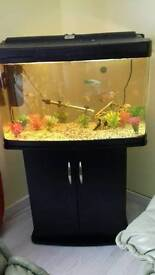 160 litres £250 ono Tropical fish tank with all including