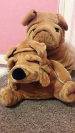 Soft cuddly wrinkly dogs