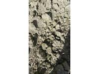 Top soil (weed free)