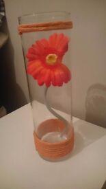 6 orange flower tubes