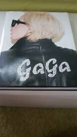Lady GaGa fashion picture book