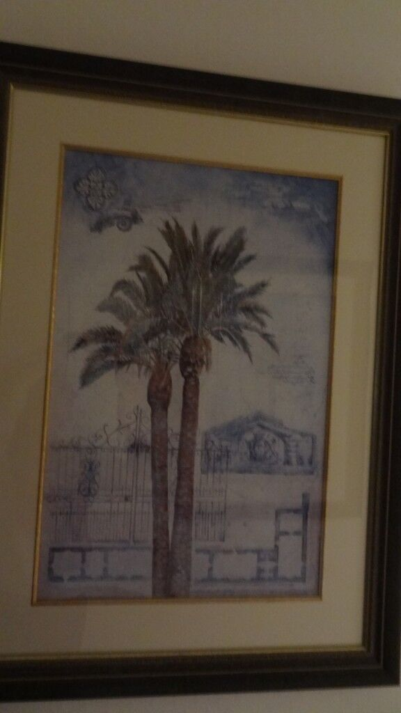 Two Large Framed Clic Palm Tree Prints